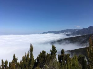 Boven de wolken, Kilimanjaro