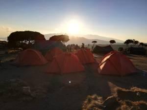 Shira camp op de Kilimanjaro
