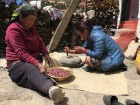 trekking nepal lunch