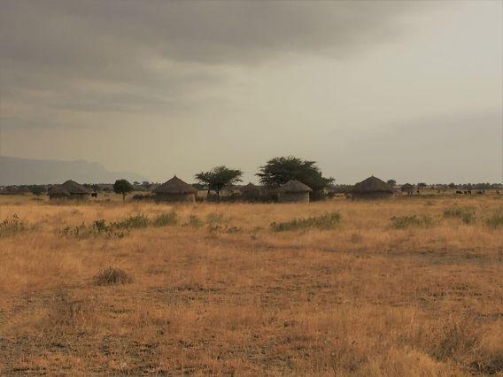 maasai boma in tanzania