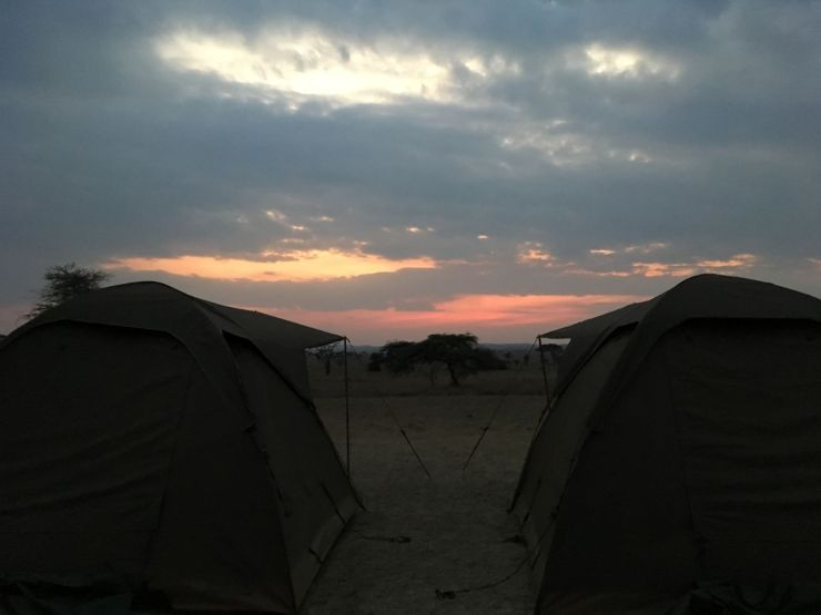 tentjes camping serengeti