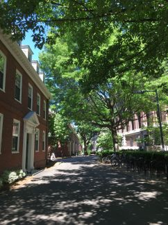 Harvard yard Boston