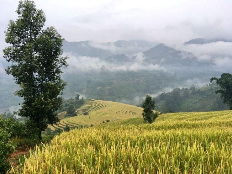Vietnam Sapa 12