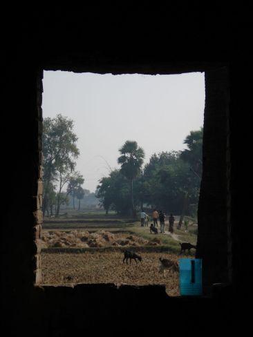bodhgaya platteland