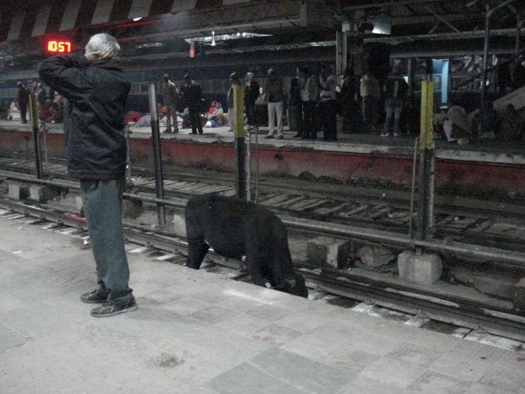 treinperron